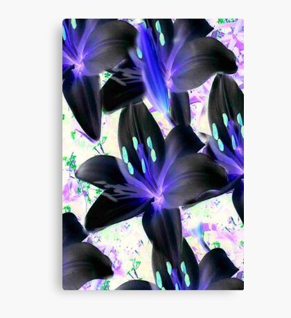 Lovely In Black...  Inverted Lilys  Canvas Print