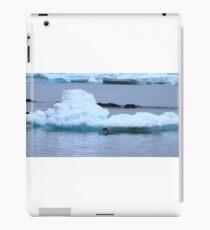 Adelie Penguins in Antarctica, 8 iPad Case/Skin