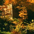 Autumn in Sturbridge by OntheroadImage