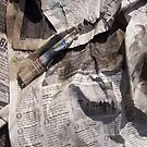 Newspapers by bviva733