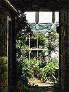 The Secret Courtyard by Dorothy Berry-Lound