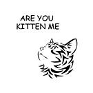 are you kitten me funny quote by jgkjamie198532