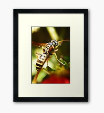 """Eco Base, The Wasp Has Landed"" Framed Print"