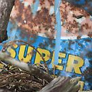 Super by Steven Carpinter