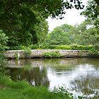 bridge  by marxbrothers