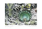 A Potter's Garden (No.1)  by Kerryn Madsen-Pietsch