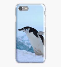 Chinstrap penguin in Antarctica, 4 iPhone Case/Skin