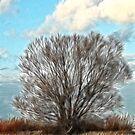 summer tree impression by Heike Nagel