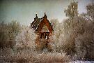 Woodilee Winter by Karl Williams