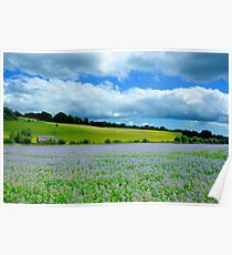 Hampshire Countryside Poster