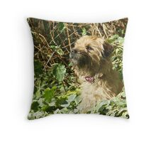 Attention Held Throw Pillow