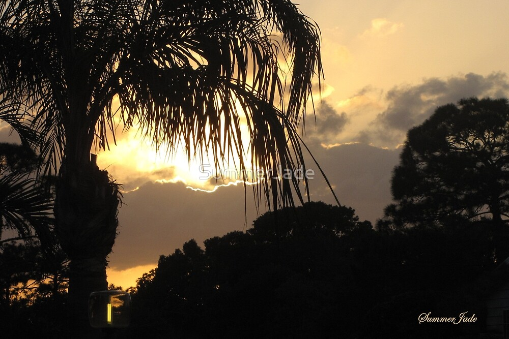 A Peaceful Evening Sky in Florida by SummerJade