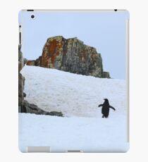 Chinstrap penguins in Antarctica,    8 iPad Case/Skin