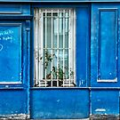 Blues by cclaude