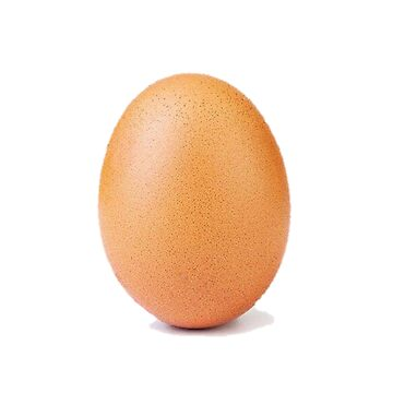 RECORD EGG by maco420