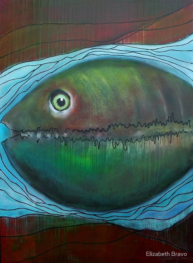 Fish Eye by Elizabeth Bravo