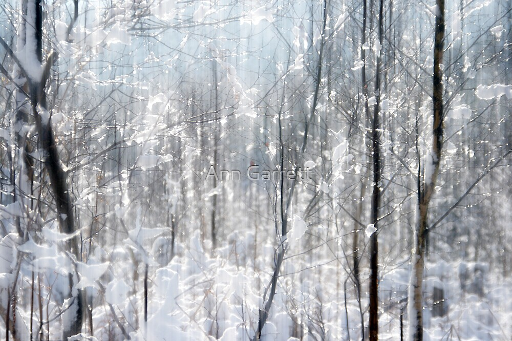 Sparkles in the Snow by Ann Garrett