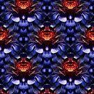 Aeonium (pattern) by Yampimon