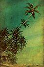 Tropical Vestige by Andrew Paranavitana