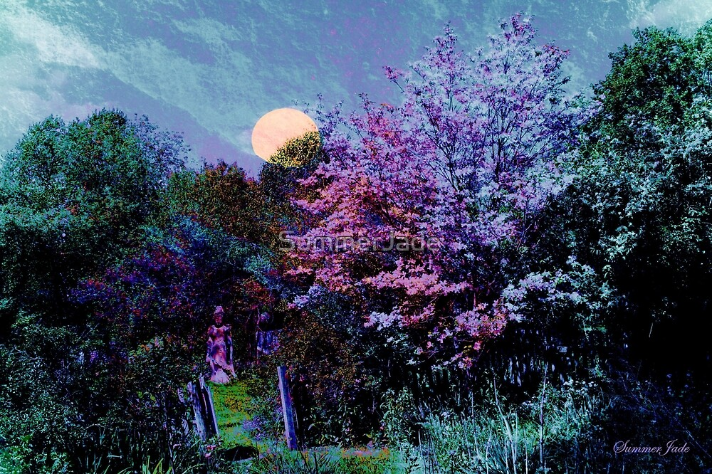Magic on the Mountain ~ Beltane Twilight by SummerJade
