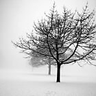 In the bleak midwinter by Rick Haigh