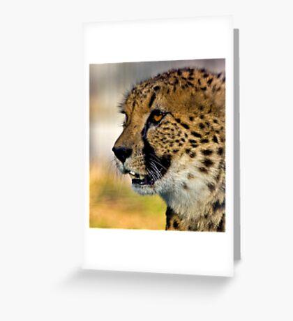 Cheetah profile Greeting Card