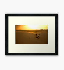 Desert light Framed Print