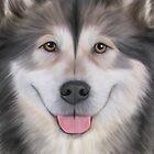 Drawing Dog Alaskan Malamute by bonidog