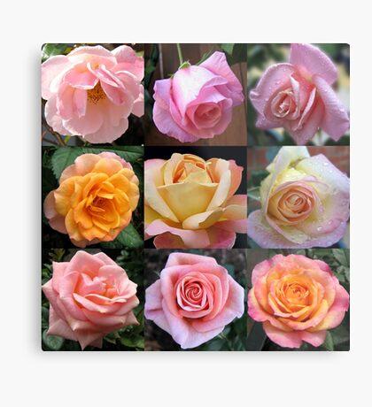 Rosen-Schönheits-Collage Metallbild
