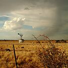 Passing Rain, Geelong District by Joe Mortelliti