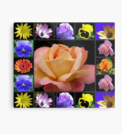 Sommer-Blumen-Collage, die Rose kennzeichnet Metallbild