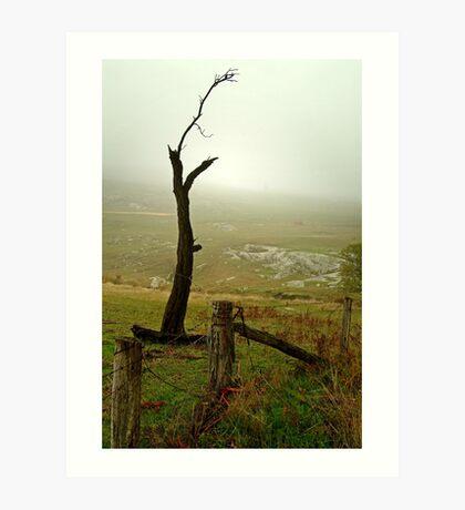 Macendon Ranges,A Damp Foggy Morning Art Print