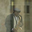 All That Jazz by Elizabeth Bravo