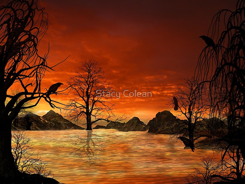 Home land by Stacy Colean