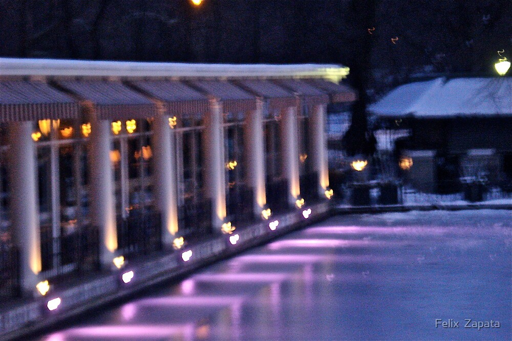 Boathouse Central Park by Felix  Zapata
