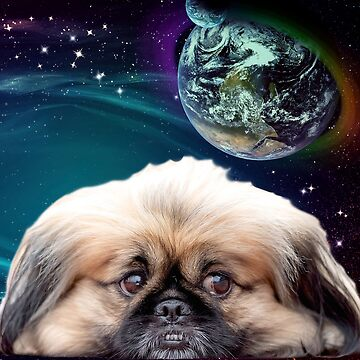 Space Planets and Pekingese Dog by ErikaKaisersot