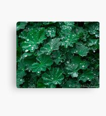 Green Earth Canvas Print