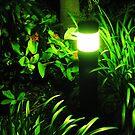 Green Light At Night by PhoenixArt