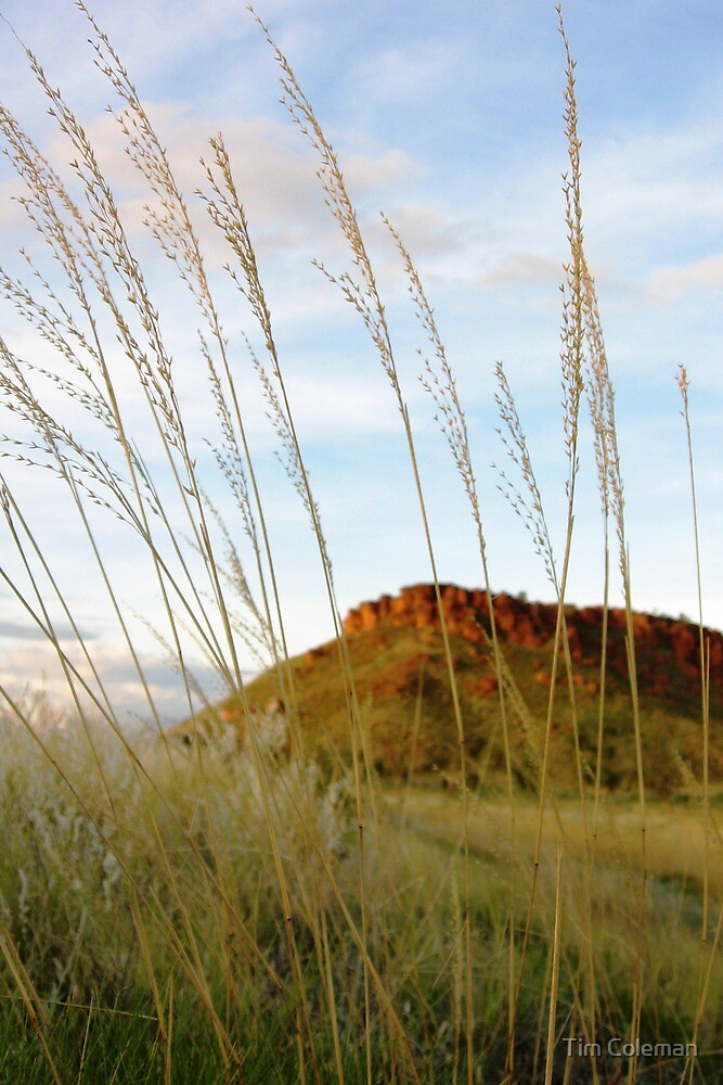 Sunset at Ngumpan Cliff by Tim Coleman