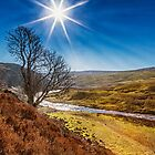 Cronkley Scar and The Tees by Reg-K-Atkinson