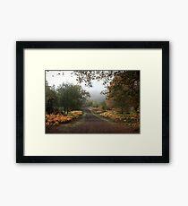 Misty Road of Autumn Framed Print