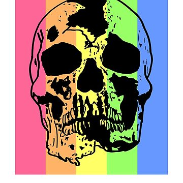 Colorful skull by schnibschnab
