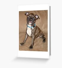 Cute Puppy Named Trouble / Peanut Greeting Card