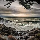 Sunset at Whale Cove Oregon Coast by Charles & Patricia   Harkins ~ Picture Oregon
