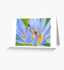 Bees on Water Lilly Greeting Card
