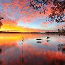 Lake Doonella - Noosa Heads by Adam Gormley