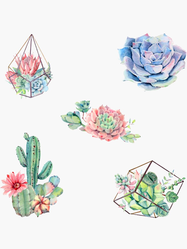 Watercolor Cactus Pack by sifasunny