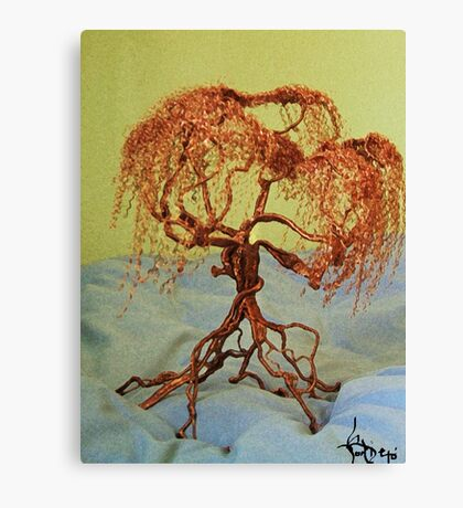 Coppertrees Canvas Print