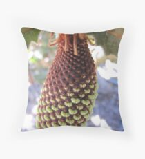 Bud of Banksia caleyi flower. Throw Pillow