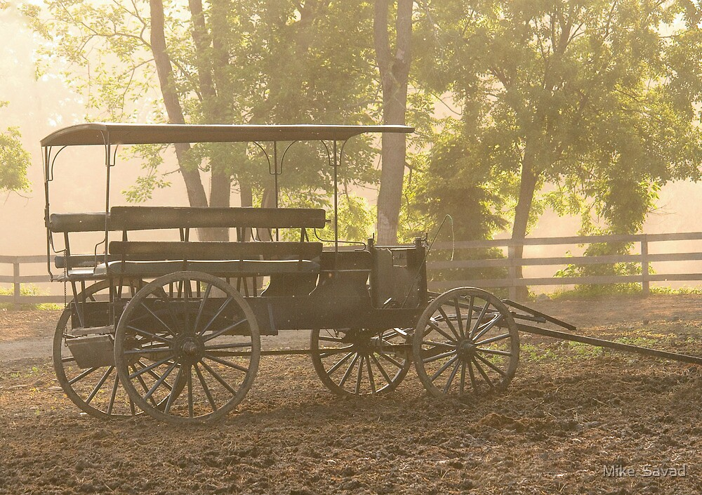 Wagon - Abe's Buggie by Michael Savad